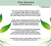 Programming Life: Silver Swimmers (poem)
