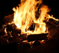 Programming Life: The World is a Campfire