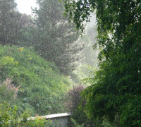 Programming Life: Meditating in the Rain, Revisited